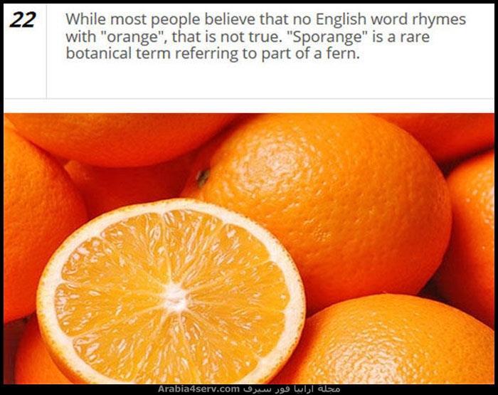 حقائق-ومعلومات-مصورة-عن-اللغة-الانجليزية-2