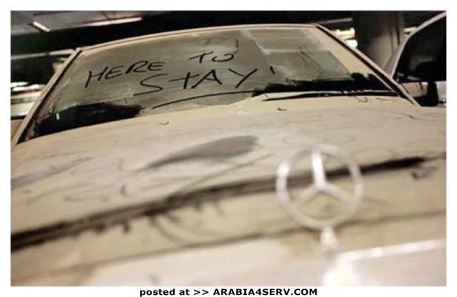 صور-سيارات-غالية-وكلاسيكية-نادرة-و-خارقة-تم-اهمالها-في-دبي-38
