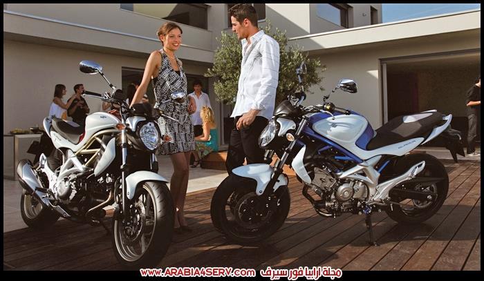 صور-سوزوكي-جلاديوس-650-Suzuki-Gladius-650-3