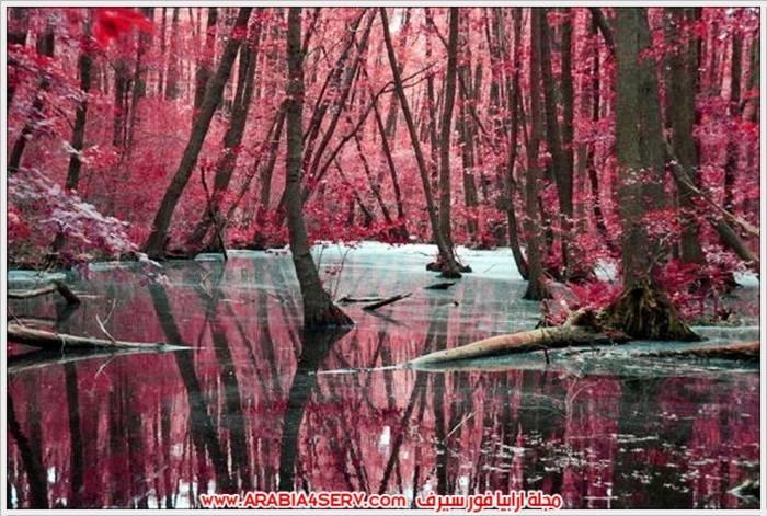 الوان-رائعة-للطبيعة-بالصور-14
