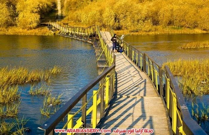 صور-اجمل-جسور-في-العالم-وسط-الطبيعة-10