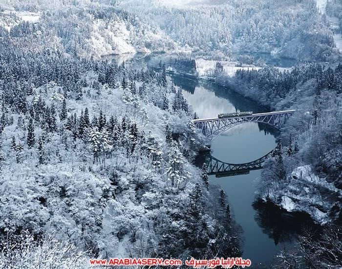 صور-اجمل-جسور-في-العالم-وسط-الطبيعة-4
