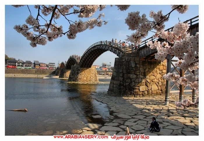 صور-اجمل-جسور-في-العالم-وسط-الطبيعة-6