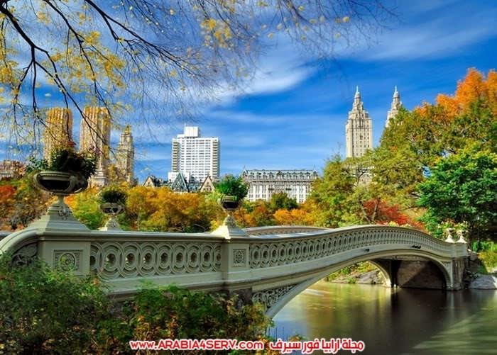صور-اجمل-جسور-في-العالم-وسط-الطبيعة-7