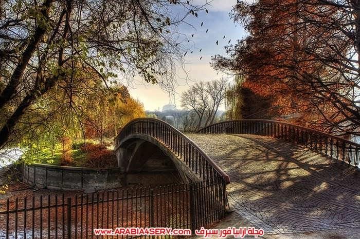 صور-اجمل-جسور-في-العالم-وسط-الطبيعة-8