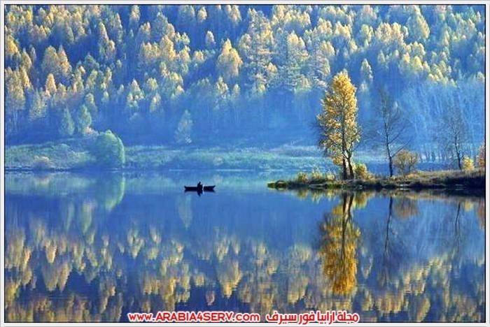 صور-الطبيعة-و-اللون-الذهبي-8