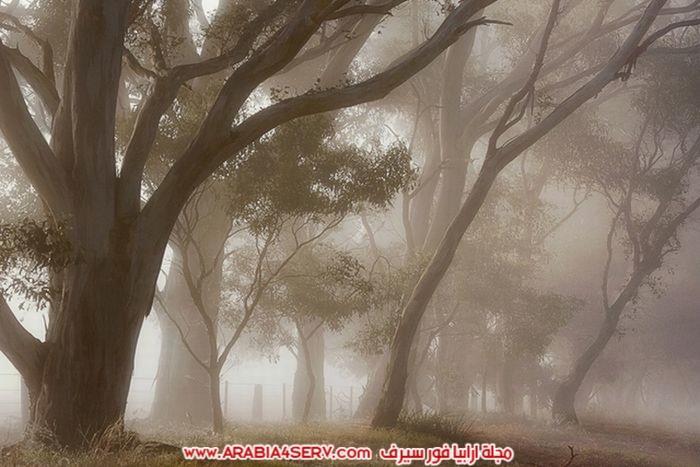 صور-توضح-جمال-الطبيعة-الساحر-8