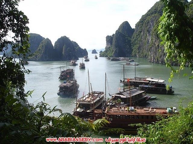 صور-خليج-هالونج-باي-في-فيتنام-صخور-غريبة-جدا-8