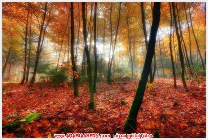 الوان-رائعة-للطبيعة-بالصور-3