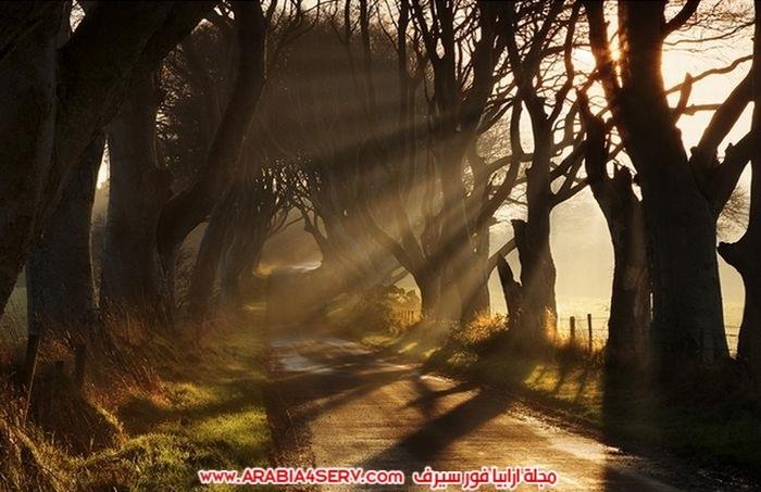 صور-توضح-جمال-الطبيعة-الساحر-11